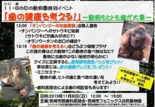 11月8日(いい歯)の日の動物園特別イベント「歯の健康を考える!」~動物もヒトも歯が大事~